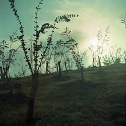 Priscilla-Stanley_Choses-Vie-04