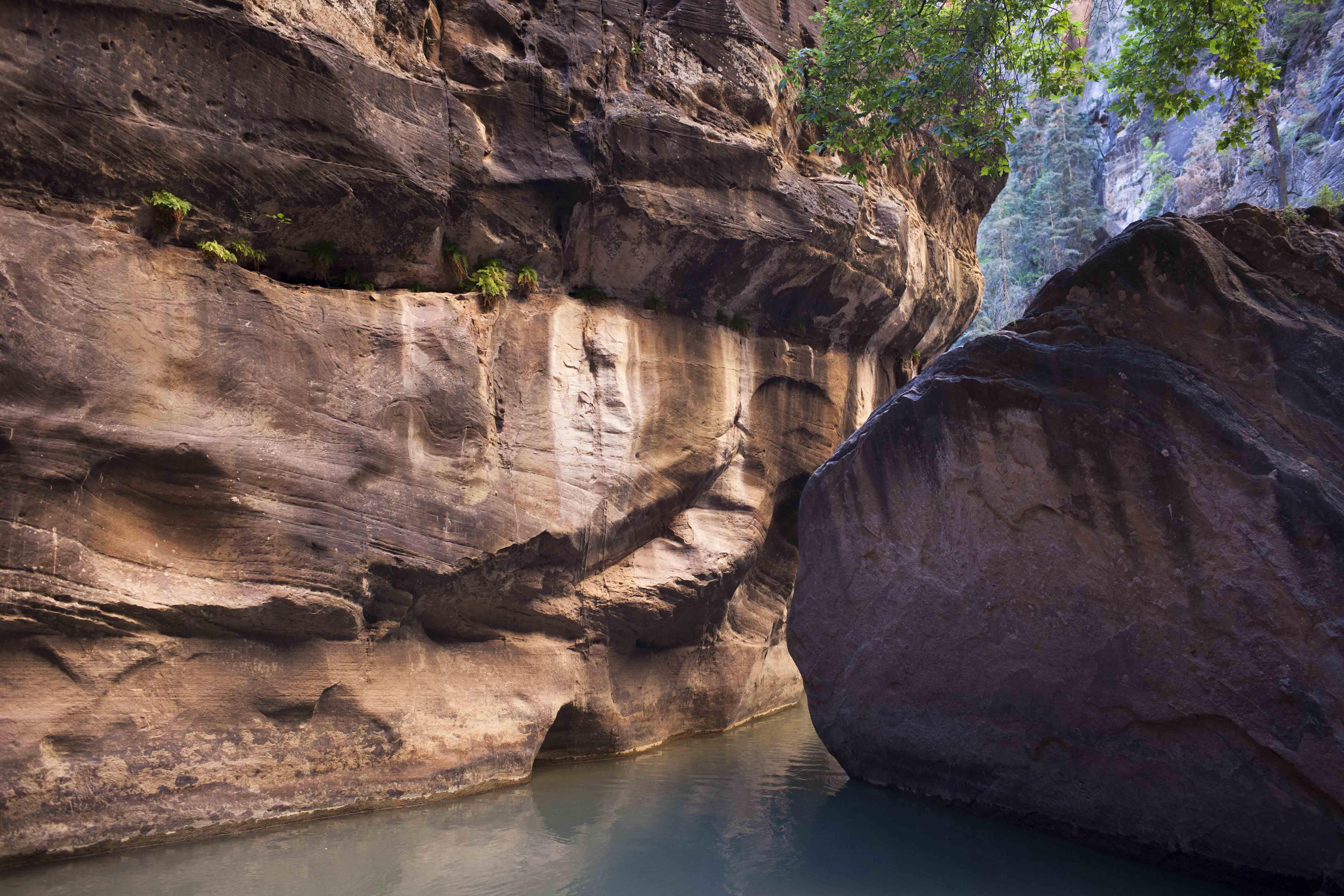 (c) Priscilla Stanley - Utah Road Tripping-28.jpg