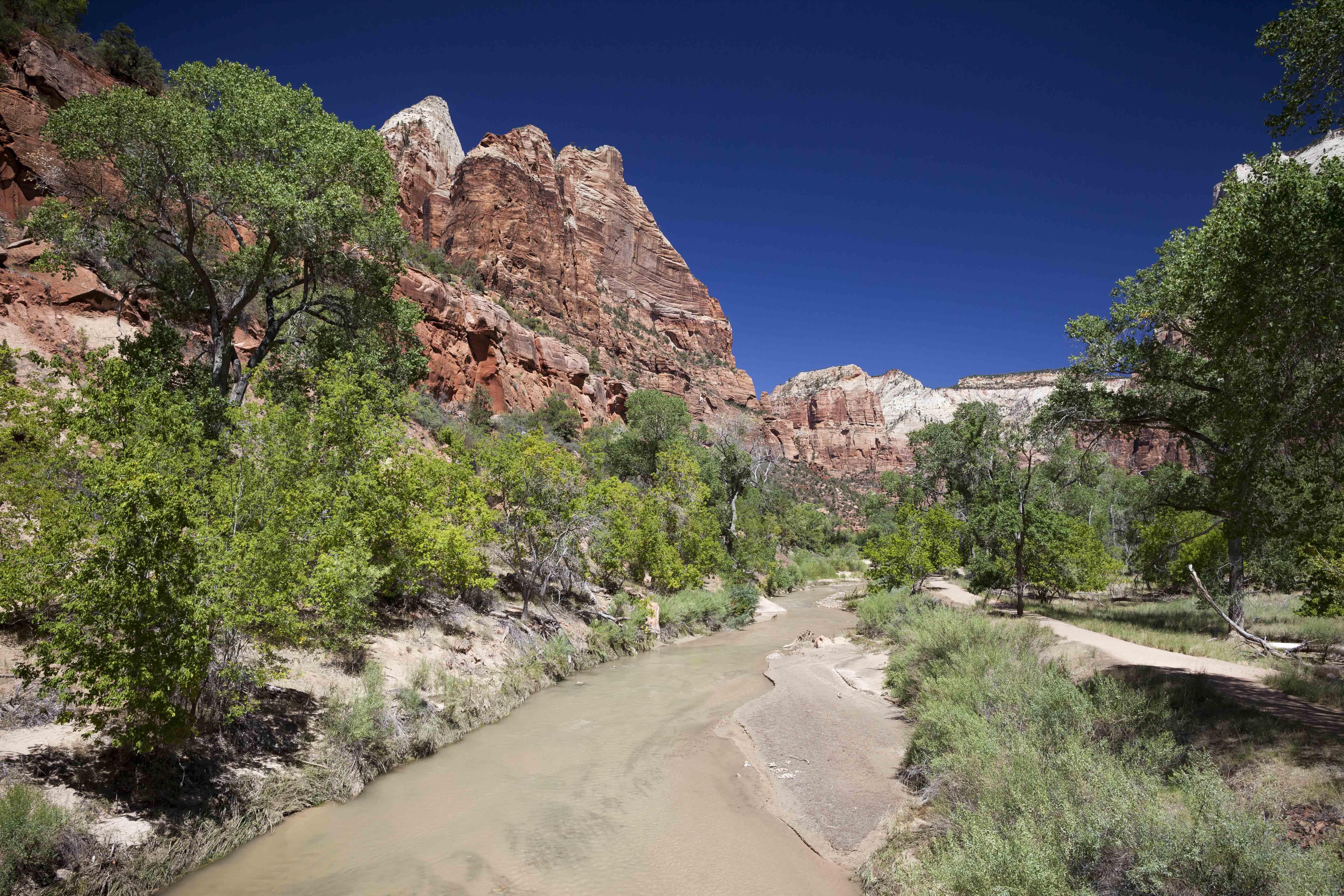 (c) Priscilla Stanley - Utah Road Tripping-8.jpg