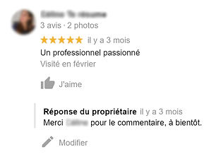 commentaire 3.jpg