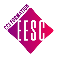 logo-EESC.png