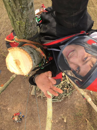 boomverzorger afvangen populier
