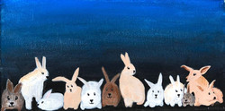 Monday Rabbits