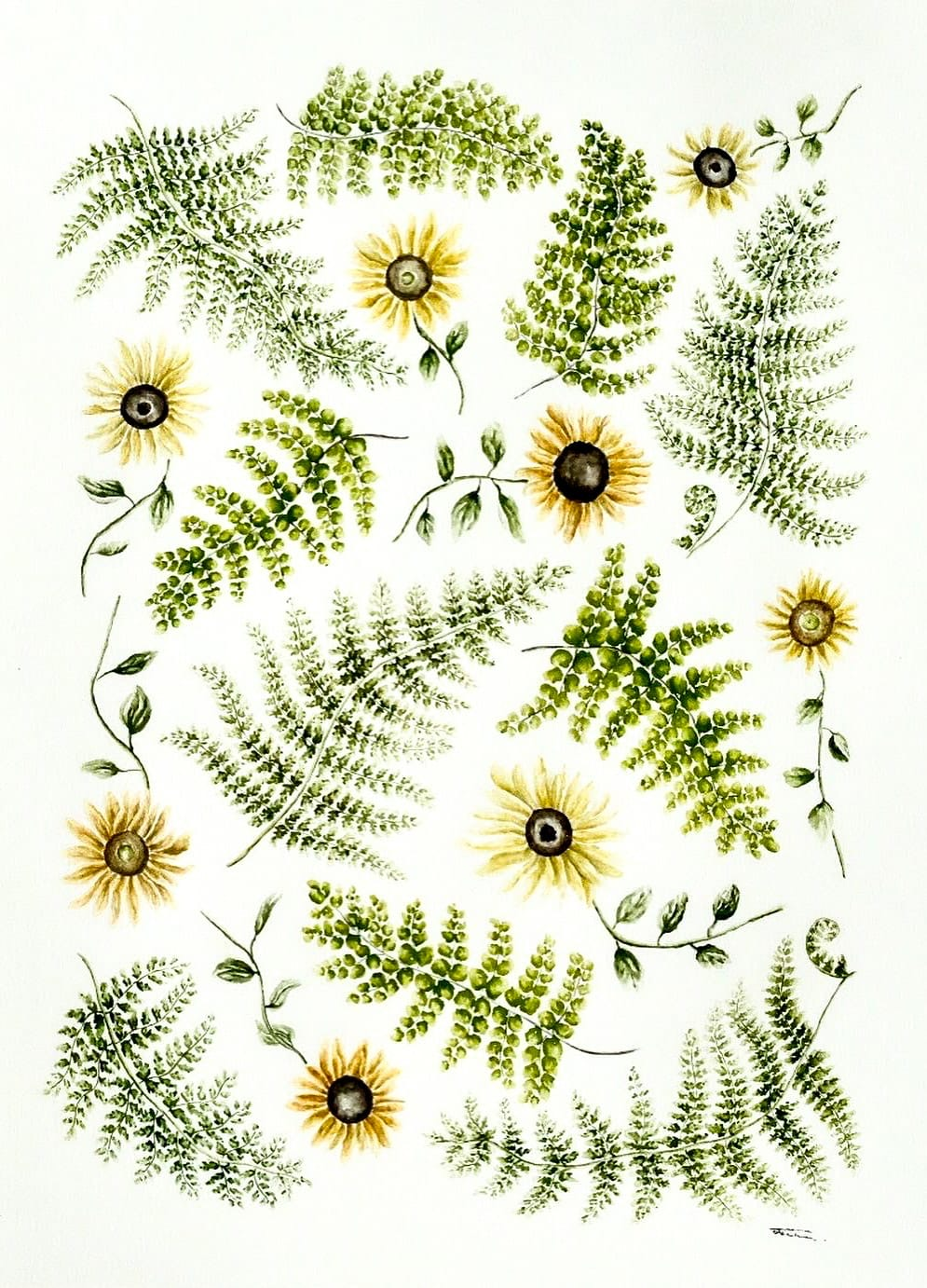 Fern and Sunflower
