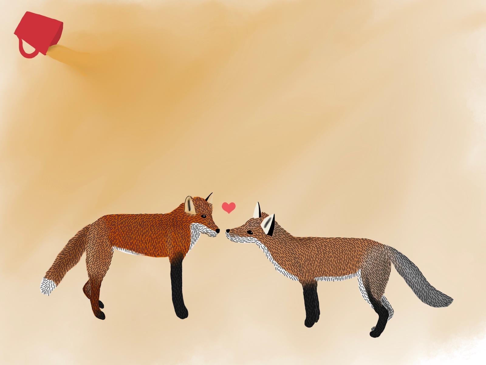 Fox, Ears, Love, Coffee