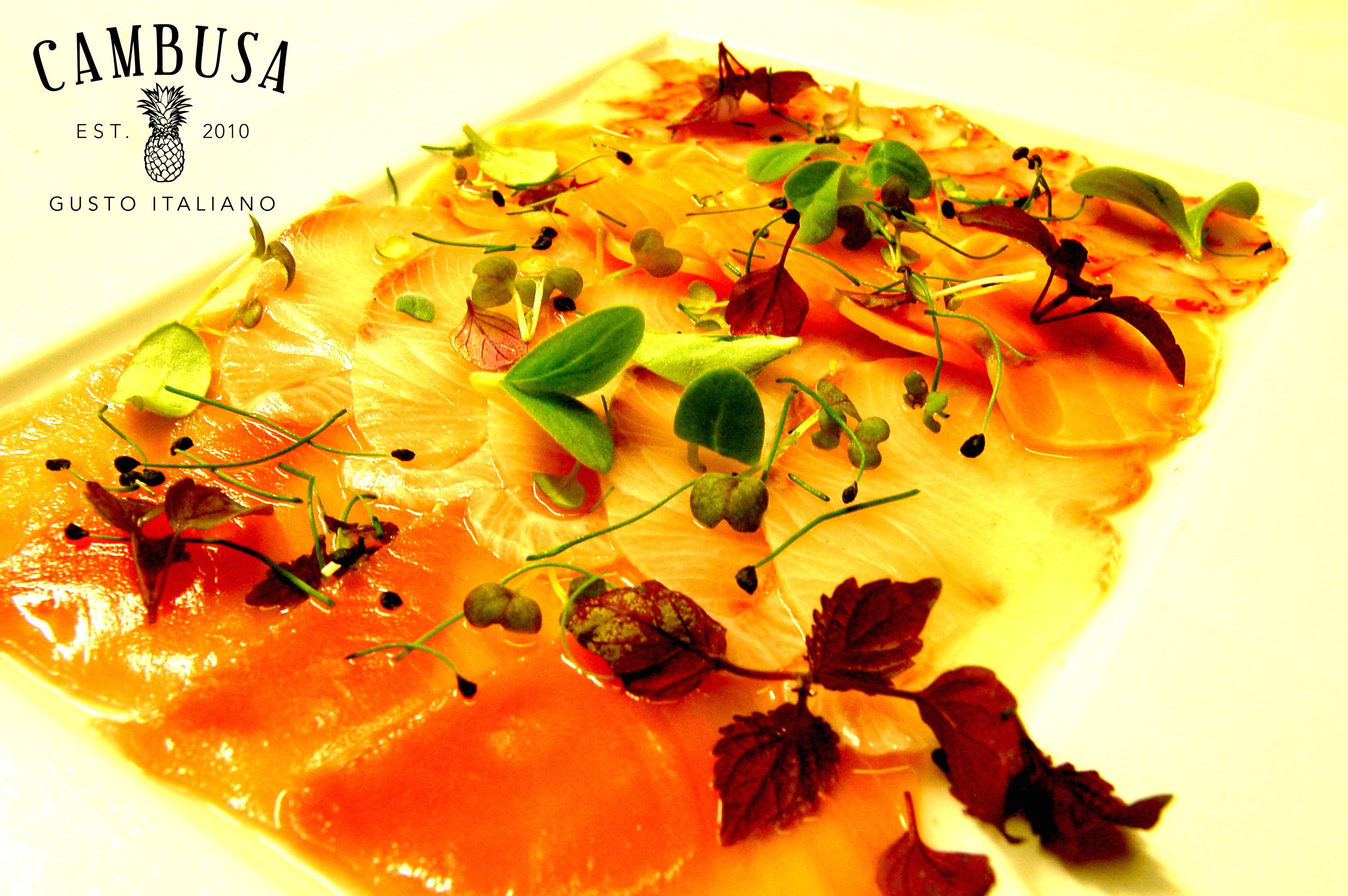 Raw Fish Texture