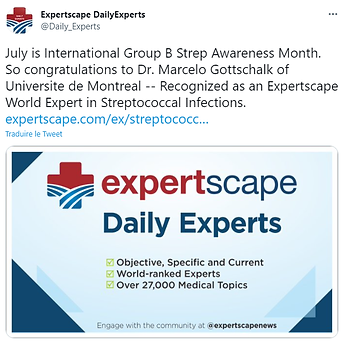 Expert monidal MGotsschalk.png