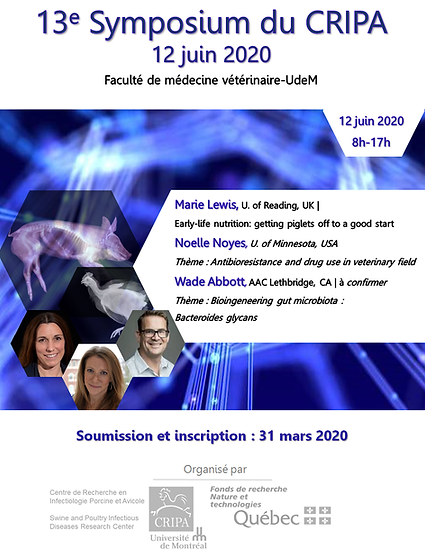 13Sympo2020.png