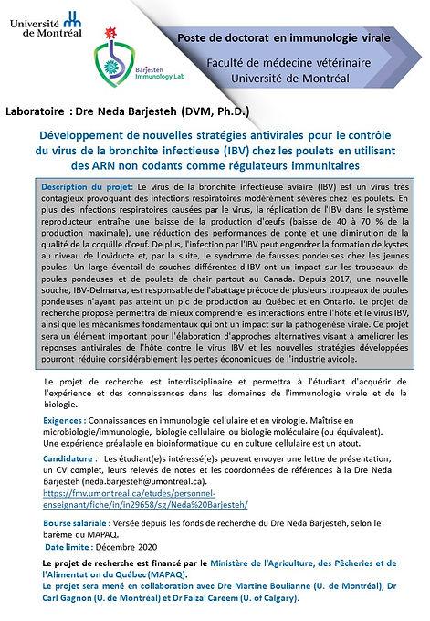 PhD french.jpg
