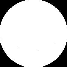 logo AWS w.png