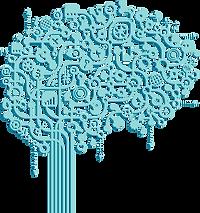 brainConnect1.png