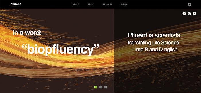 Pfluent_s2.jpg