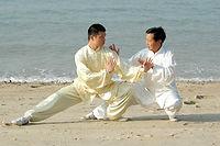 Tai Chi Hong Kong Push Hands,Master Chow