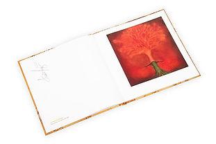 Libro de arte Casa Lam - interiores
