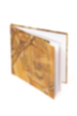 Libro de arte Casa Lam