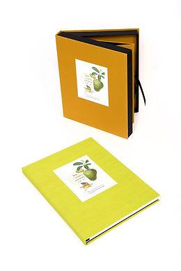Caja en pasta dura forrado en tela y con tejuelo, con libro de arte