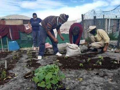 Food Garden Workshop in Villiersdorp