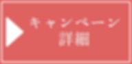 ボタン詳細_03.png