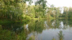 СНТ Садовод пруд
