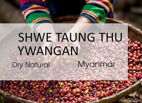 Myanmar l Shwe Taung Thu l Dry Natural