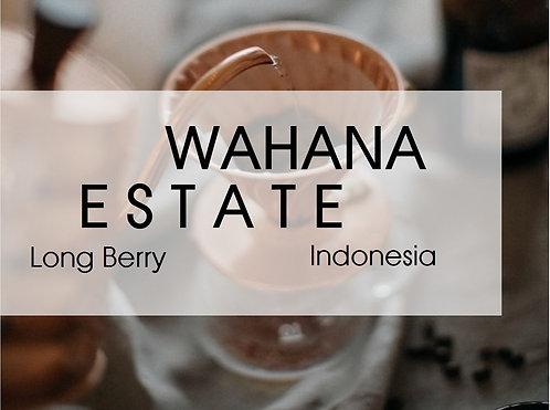 Indonesia l Wahana Longberry l Grade 1