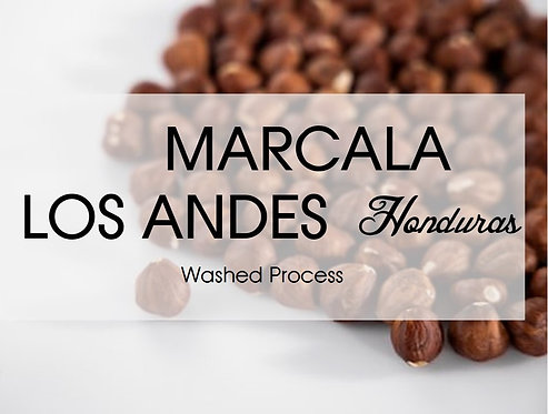 Honduras l Beneficio Los Andes l Smallholders l Washed