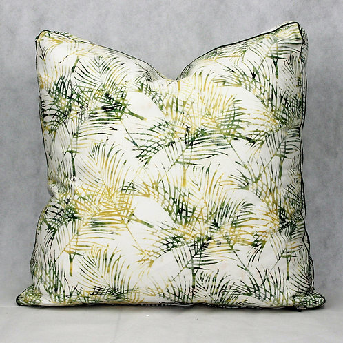 Cushion Palm Bangalow