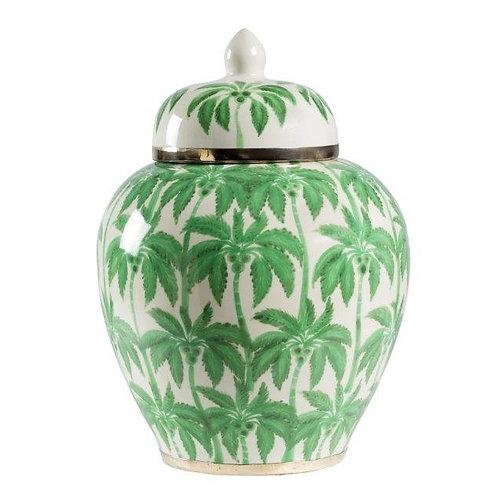 Ginger Jar Palm