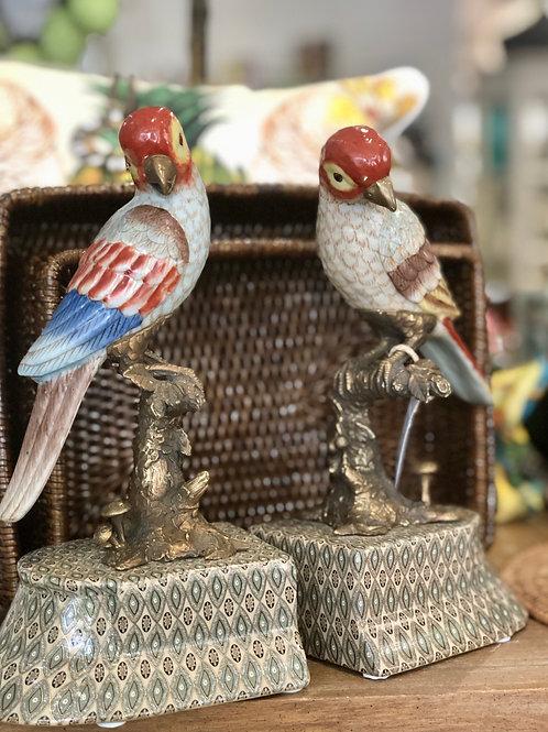 Bookends Perroquet Bird