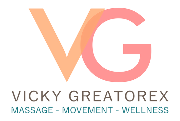 VG logo colour 90 dpi transparent backgr