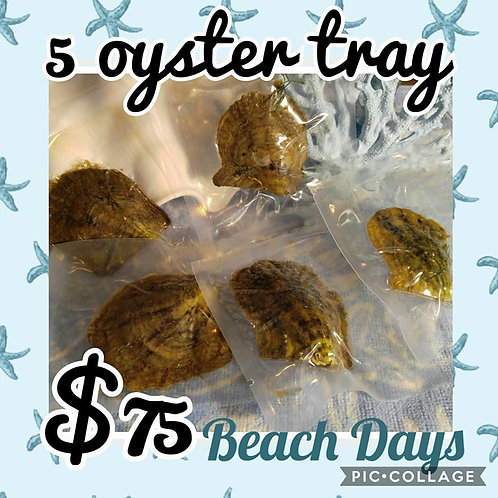 5 oyster tray