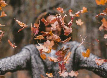 Autumn's Opportunities...