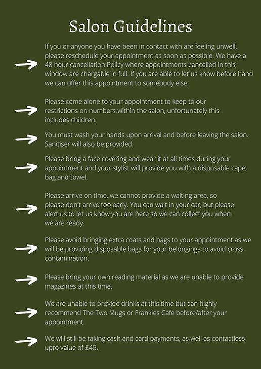 Salon Guidelines-2.jpg