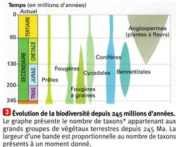 Biodiversité évolution depuis 245 Ma