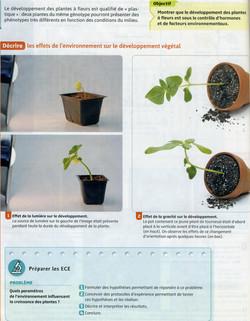 Activité 1 développement plante (1)