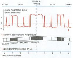 Dorsale et champs magnétiques