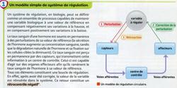 Modèle de régulation