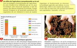 Biodiversité et pratiques agricoles