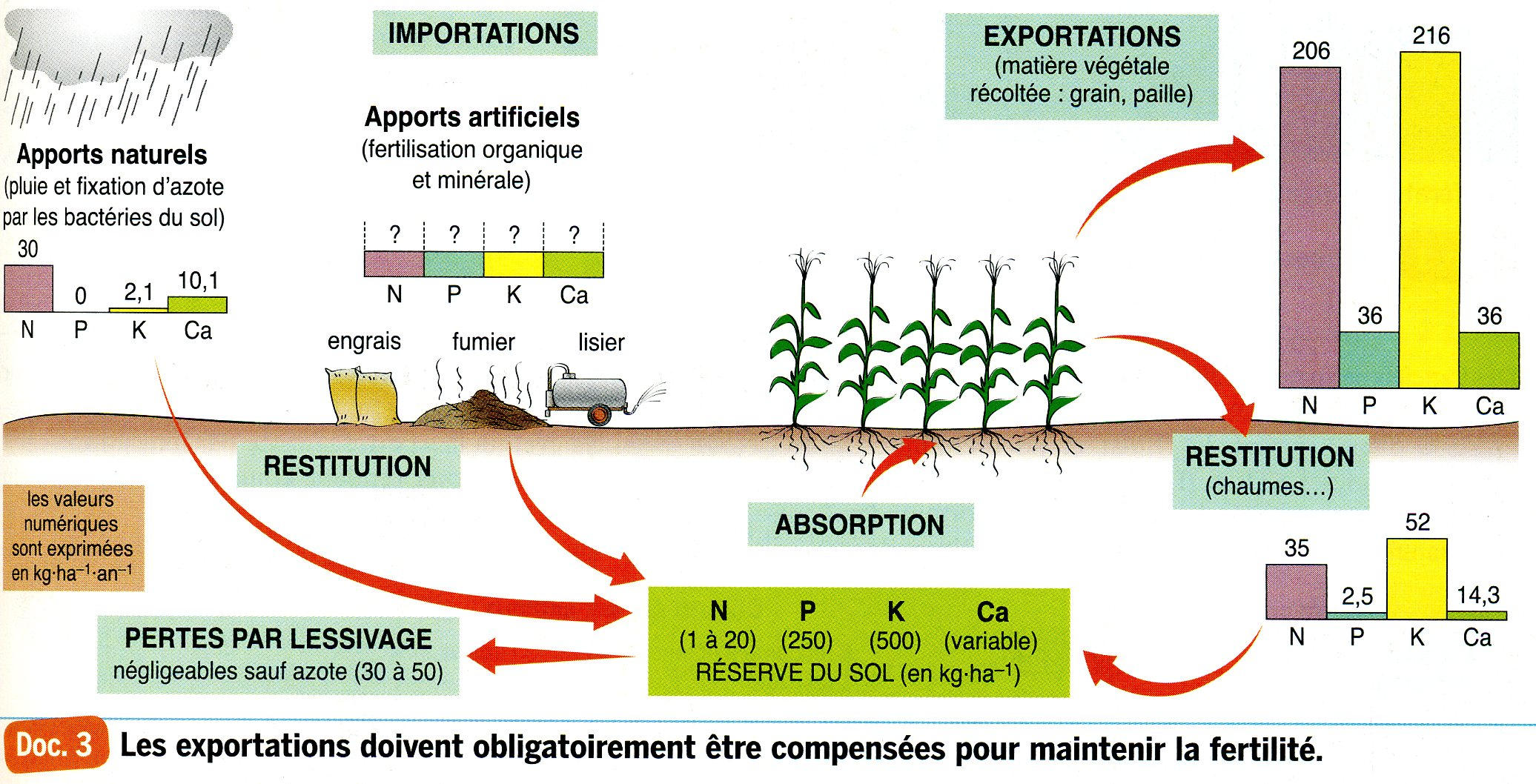 Agrosystème import export