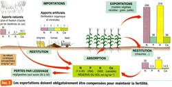 Agrosystème import export
