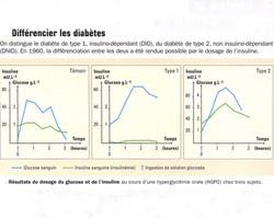 Types de diabète et insuline