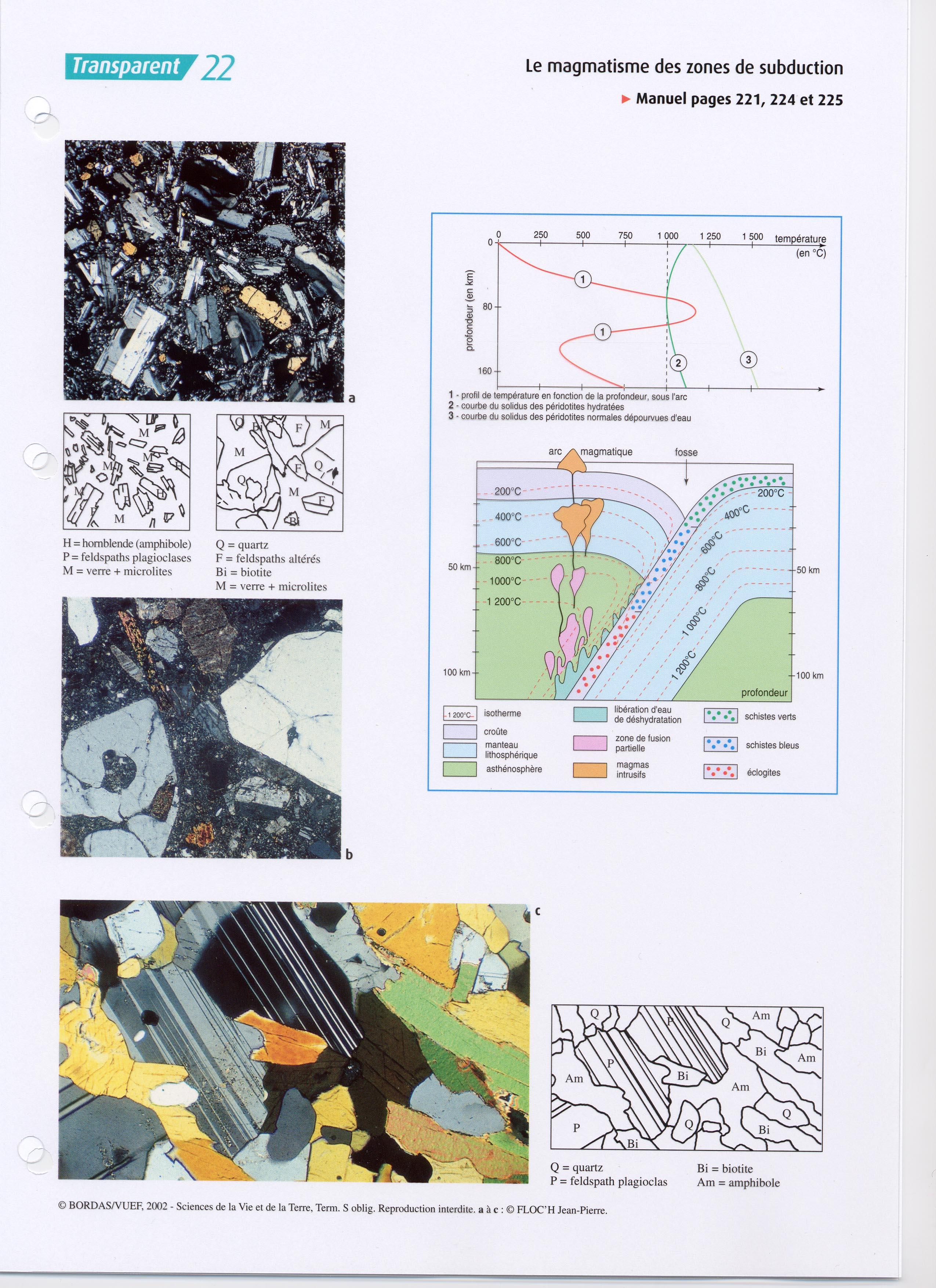 Subduction et magmatisme