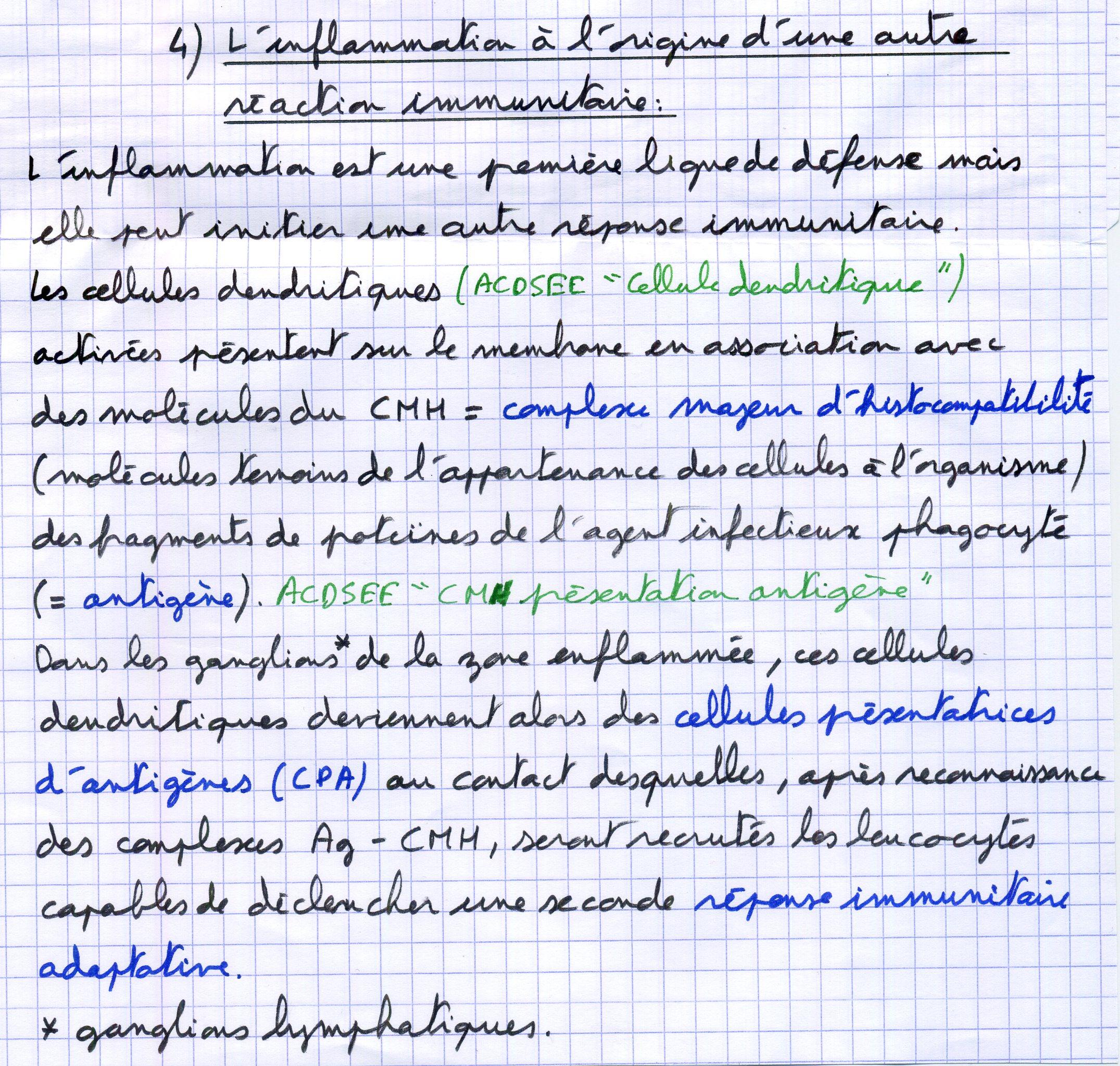 Immuno P6