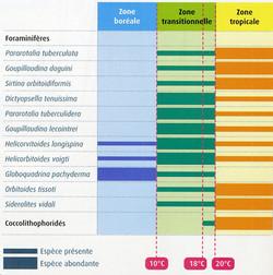 Zone climatique et foraminifères