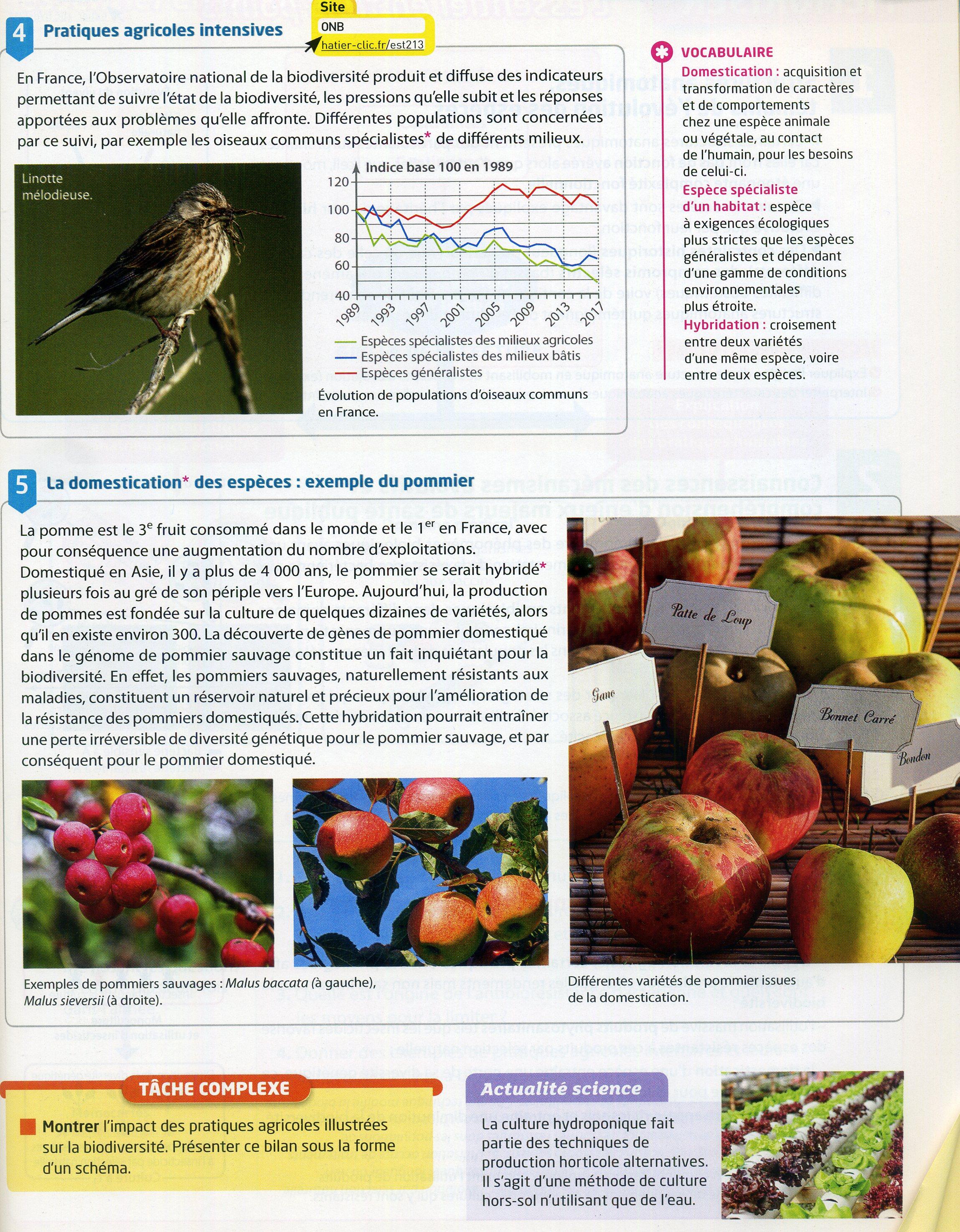 Activité 6 pratiques agricoles (2)