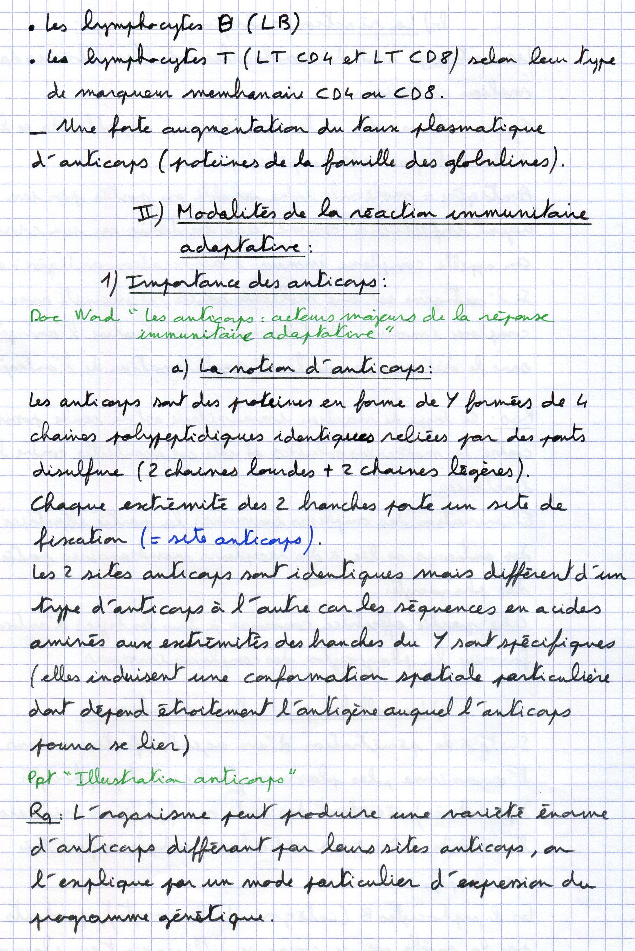 Immuno P8