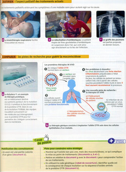 Activité 3 Mucoviscidose thérapie (2)