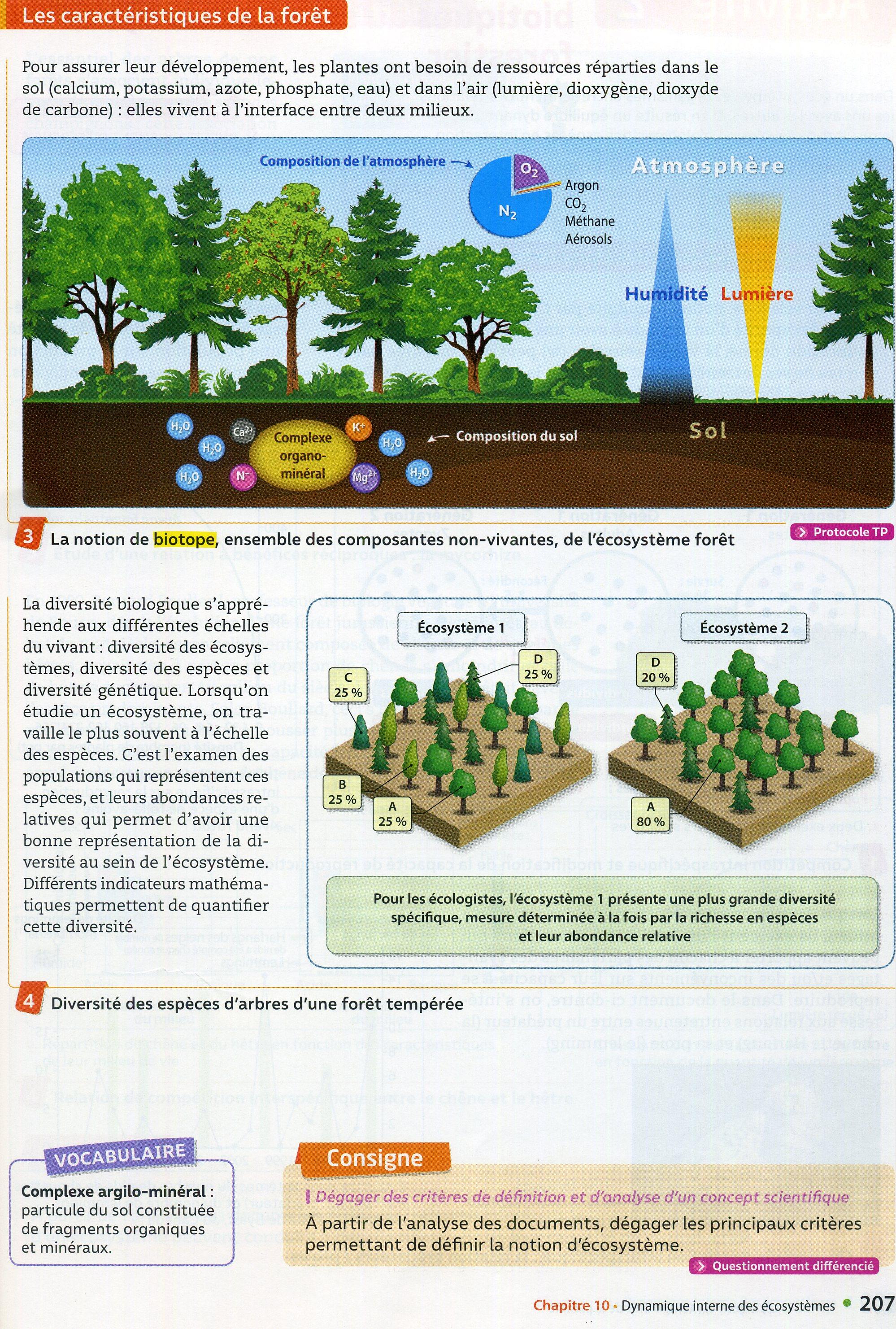 Activité 1 définir un écosystème (2)