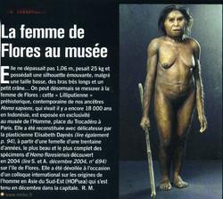 Homo sapiens femme de Flores