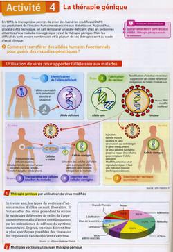Cancer thérapie génique (1)